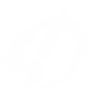D_logo_white_bigOpacity-222-988x1024